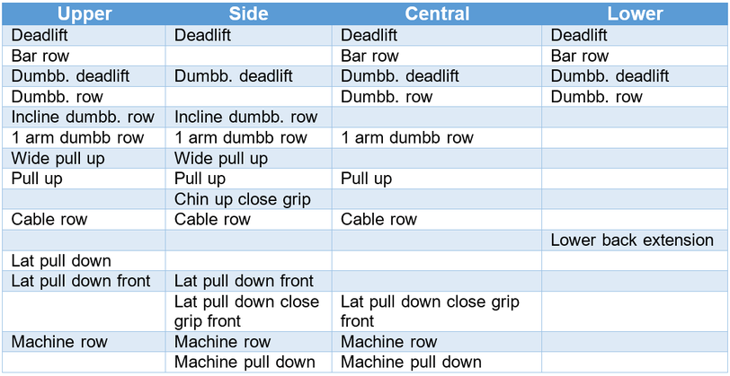overview back exercises deadlift pull up lat pull down dumbbell row