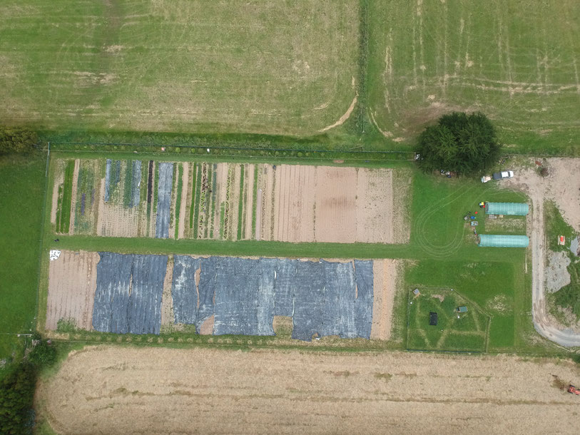 Straw Hat Gardens from above - the JM Fortier system's features are quite visible there!