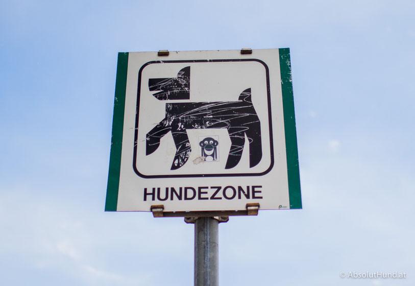 Pollux & Coco unterwegs Hundezone Edelsinnstraße, 1120 Wien