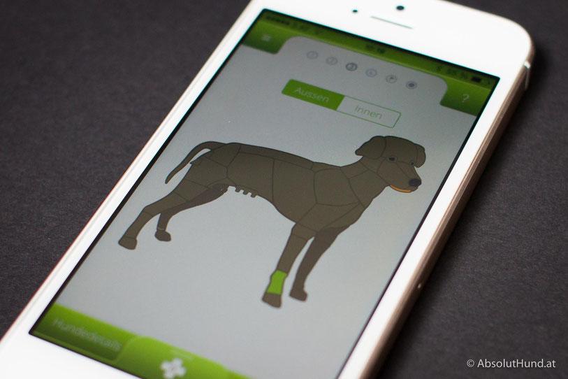 Diagnose App für Hunde - Iphone - AbsolutHund.at