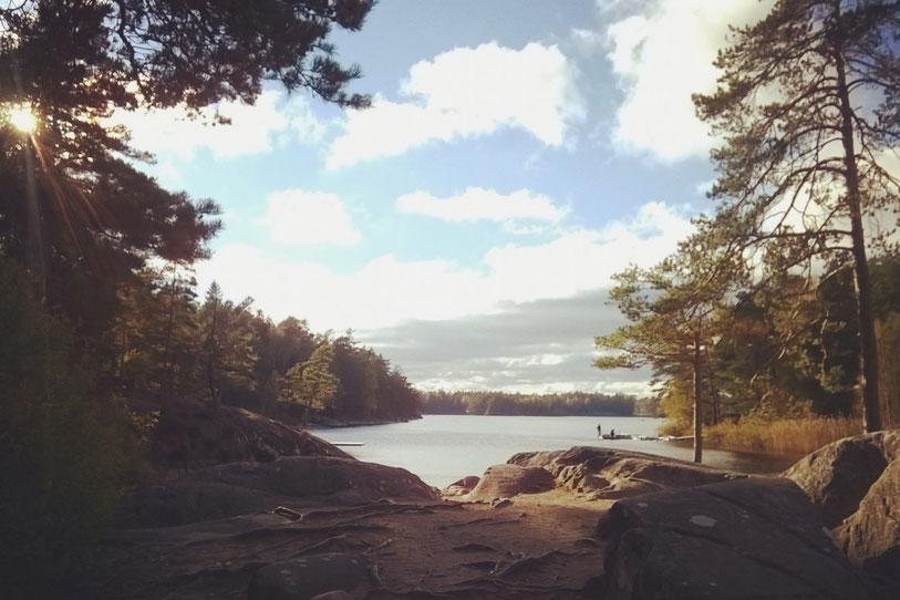 suède bigousteppes lac forêt