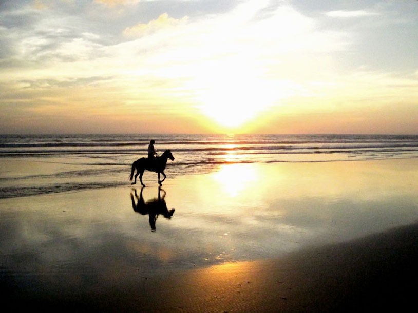 Horse riding by sunset on beach Junquillal