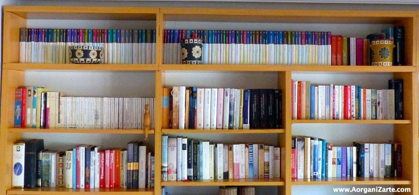 Libros organizados - AorganiZarte