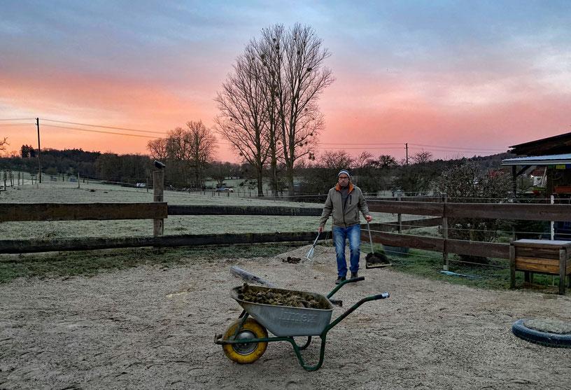 Silvestermorgen: Stallarbeit bei Sonnenaufgang.