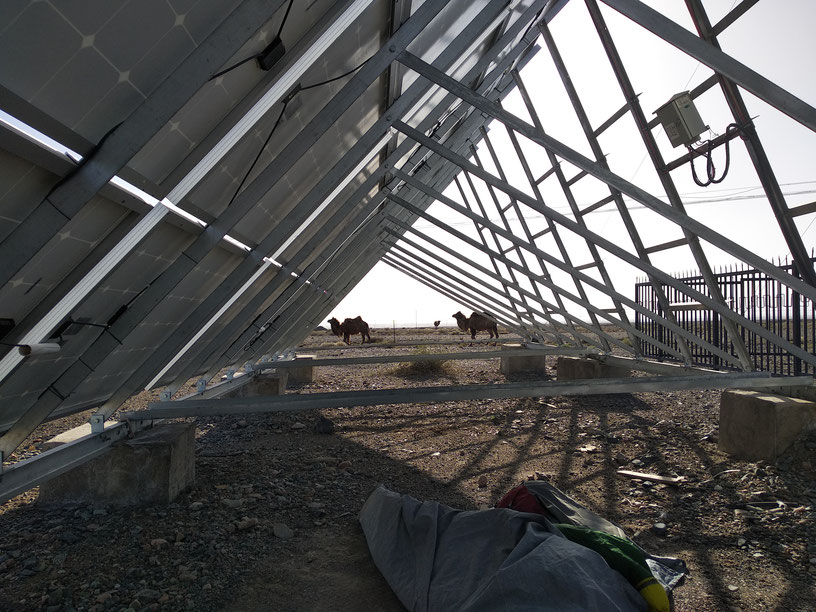 Camp visitors passing by in the Gobi as we take shelter from the sun beneath solar panels.