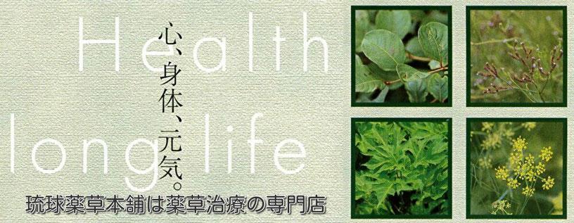 琉球薬草本舗は薬草治療の専門店