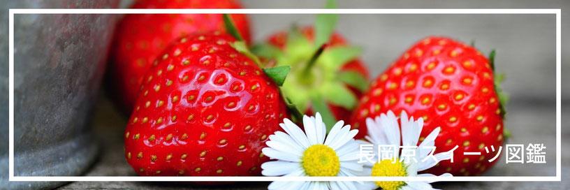 苺ショートのイメージ画像