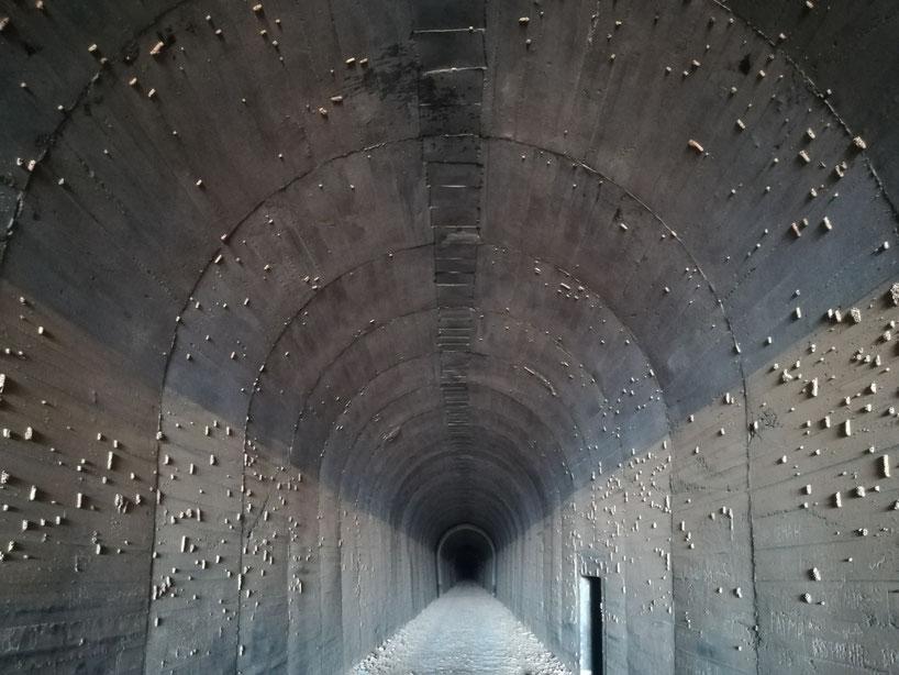 Und so geht das noch ganze 2 Kilometer - ein Wahnsinns LostPlace. Die Objekte an den Tunnelwänden sind Wespen/Bienenwaben