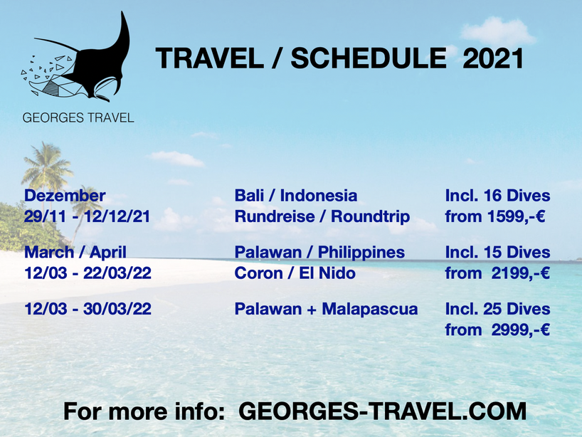 Georges Travel, Gruppenreise