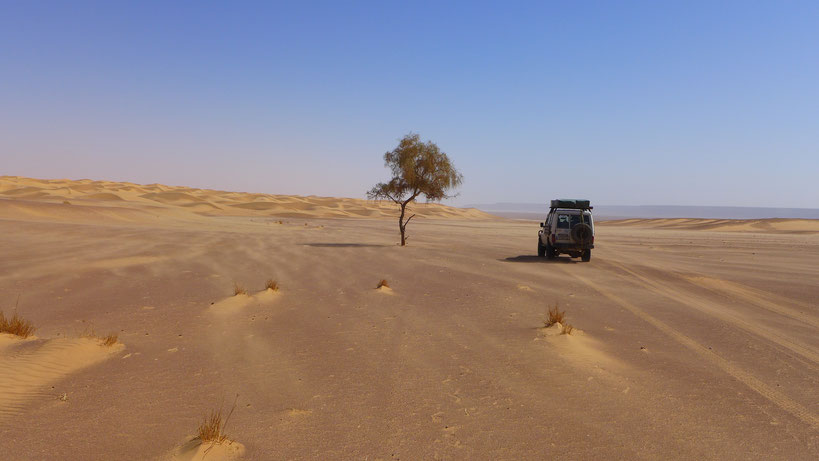 Auf dem Weg zum Guelb er Richat - GC2NCFR Eyes of the Sahara (El Richat)