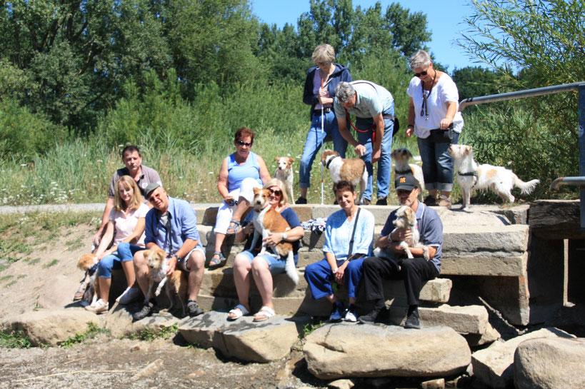 Gruppenfoto vom 15.07.2018 - 52. Braunschweiger Kromi-Spaziergang