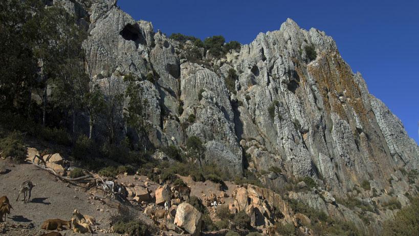 Cava del Moro Spain