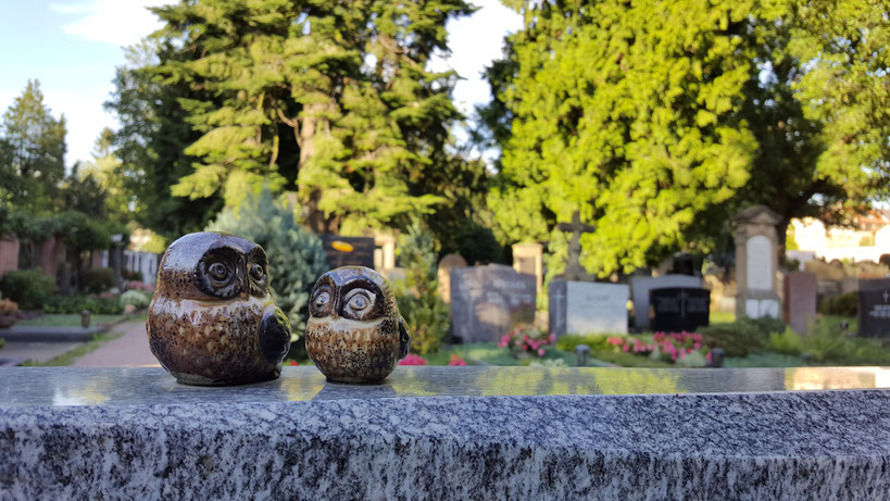 Altstadtfriedhof Aschaffenburg MelanieaufReisen