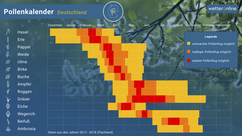 Pollenkalender Deutschland Wetteronline.de Cuypers Apotheken
