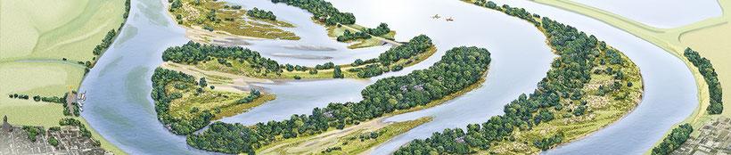 Visualisatie natuurontwikkelingsplan Nieuw Leven in de Lus van Linne (tekening Kees Nuyten)