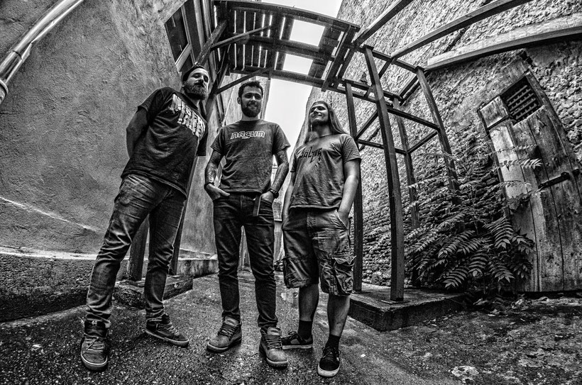 New single from Romanian Grindcore veterans SPIRITUAL RAVISHMENT, rockers and other animals