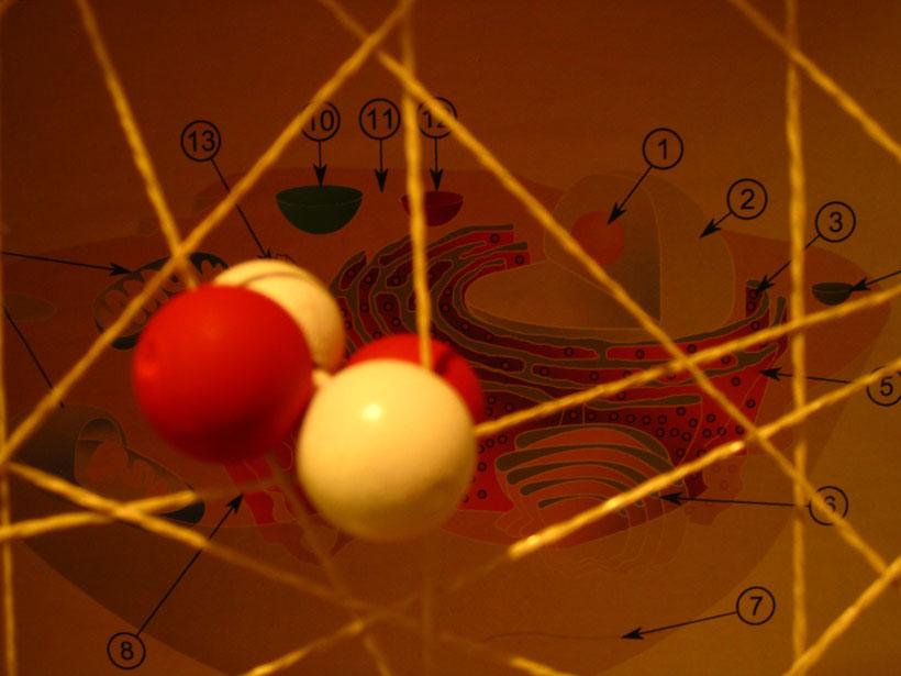 Ein Heliumkern (Alfastrahlung) am Modell der menschlichen Haut im Vortrag von Arne Wittorf