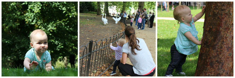 St. James's Park - Giving Baby Time to Play in London