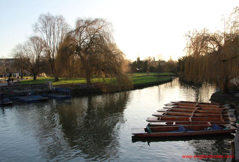 Sehenswürdigkeiten und Reisetipps für Cambridge: Boote der Punting Tours am Fluss Cam