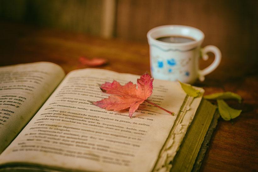 Die besten Klassiker der englischen Literatur: Charlotte Brontë Jane Eyre