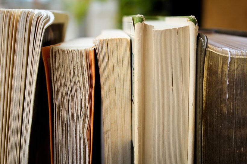 Die Romane von Daphne du Maurier: Rachel