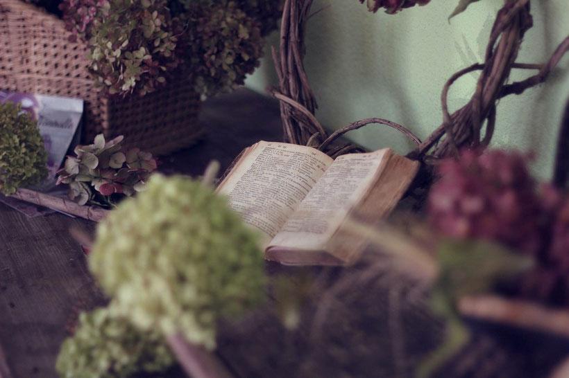 Die Romane der Brontë-Schwestern: Die Herrin von Wildfell Hall von Anne Brontë