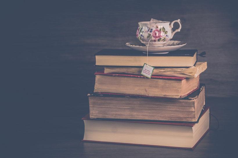 Die Romane der Brontë-Schwestern: Agnes von Anne Brontë