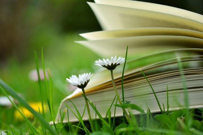 Die besten Klassiker der englischen Literatur: E. M. Forster Wiedersehen in Howards End