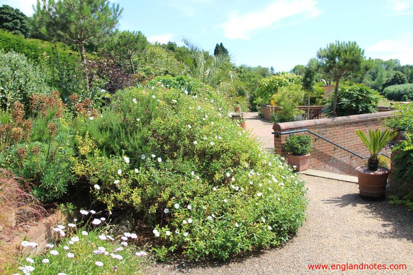 Die 10 schönsten englischen Gärten in England: Szene eines typisch englischen Gartens.