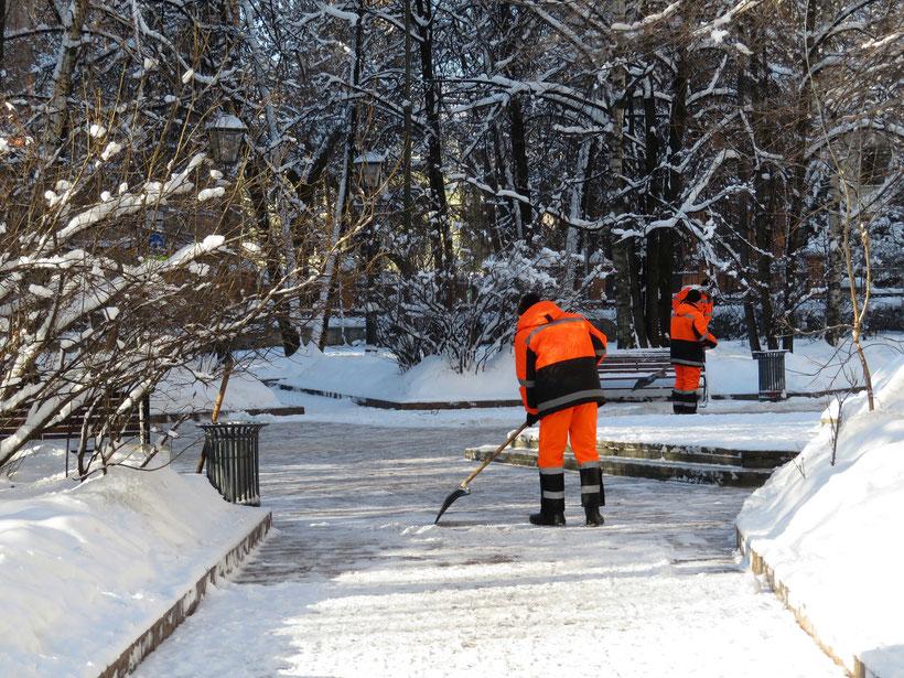 Winterdienst auf Münchner Straßen