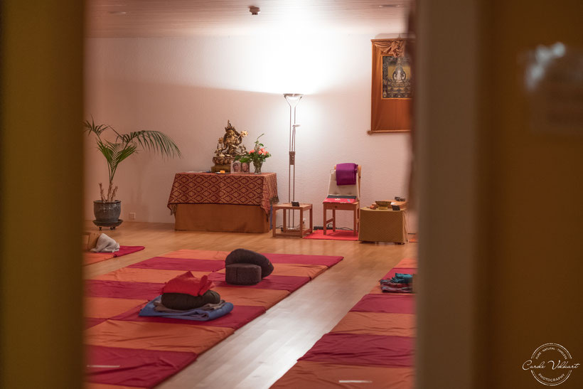 Vipassana, Meditation, Retreat, Beatenberg, Meditationszentrum Beatenberg, Schweiz, Schweigeretreat, Dhamma, Metta