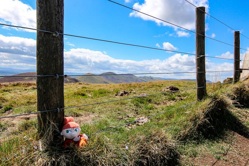 Elchior und Pikku Myy in den Pentland Hills