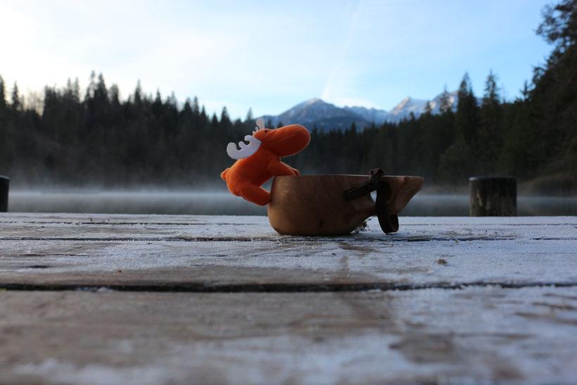 Elchior am Crestasee