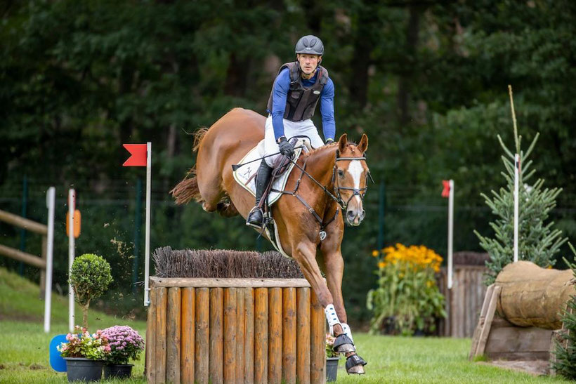 Hanoverian Champion of the six-year-old eventing horses: Peppermint Patty with Stephan Dubsky (here at the Bundeschampionat 2020). Photo: Hannoveraner Verband/Archive/Lafrentz