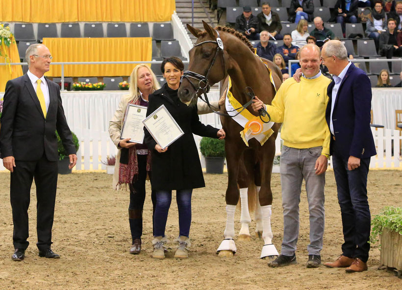 Sensational prize for the premium stallion by Vivaldi/Dancier. Hans-Henning von der Decken, Ulrike Buurman, Rosemarie Kemper, Arnd Schwierking and Ernst Kemper (from left to right) were delighted to receive over 2,010,000 Euros.  Photo: Tammo Ernst