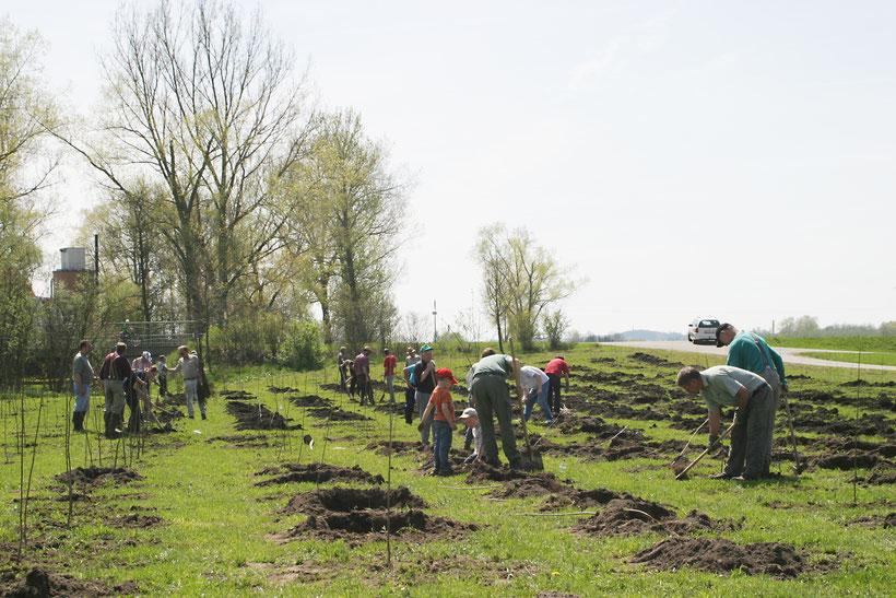 """Die SDW BC hofft dass 2021 der """"Musterwald"""" auf Gemarkung Langenenslingen gepflanzt werden kann und auf eine rege Beteiligung vieler Mithelfer wie bei der letzten Pflanzaktion 2005 in Ertingen"""