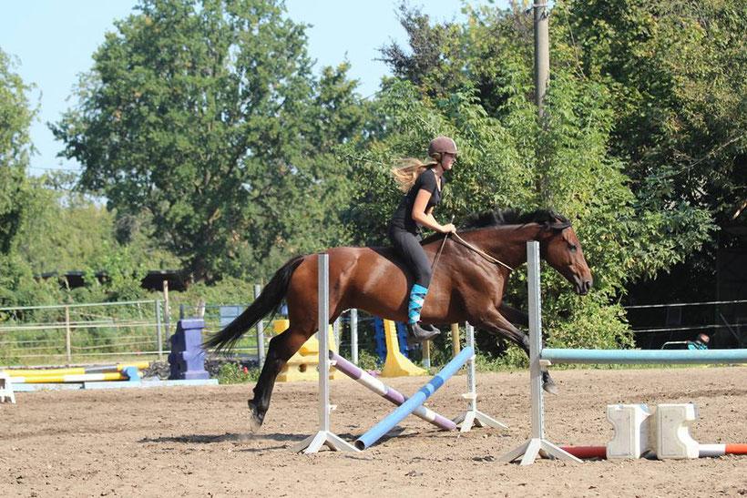 Die gewissenhafte Arbeit an der persönlichen Leittierposition zahlt sich mit unbezahlbaren Momenten mit unserem Partner Pferd aus.