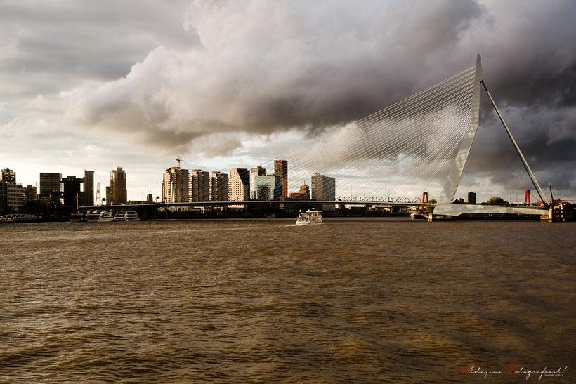 Rotterdam sky line en de Erasmus brug