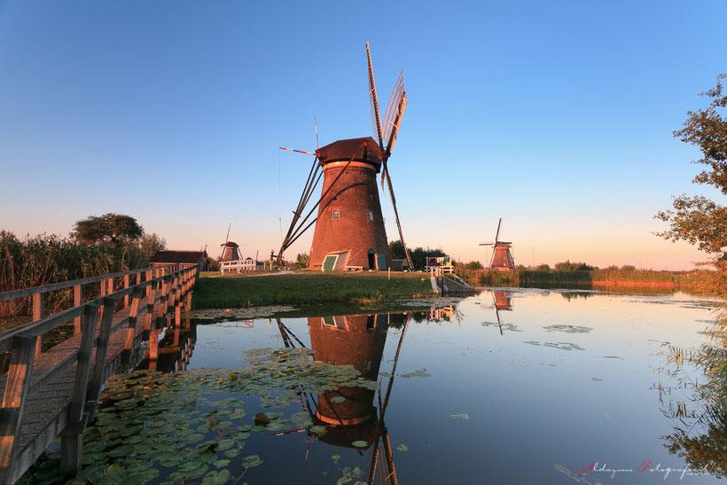 Kinderdijk, Molens, Wim Zilver, water, kanaal, waterplanten
