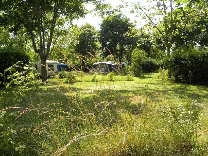camping vichy tentes camping car asci glamping tente lodge hébergement insolite piscine chauffée croix saint martin camping