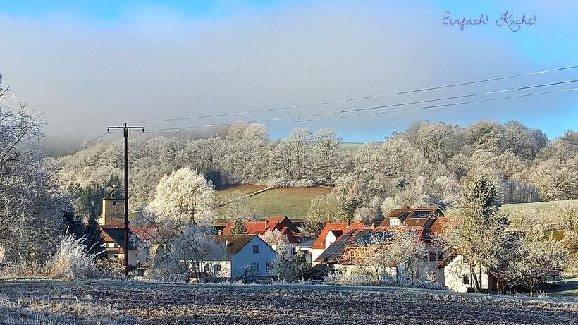 Waldhessen im Winter