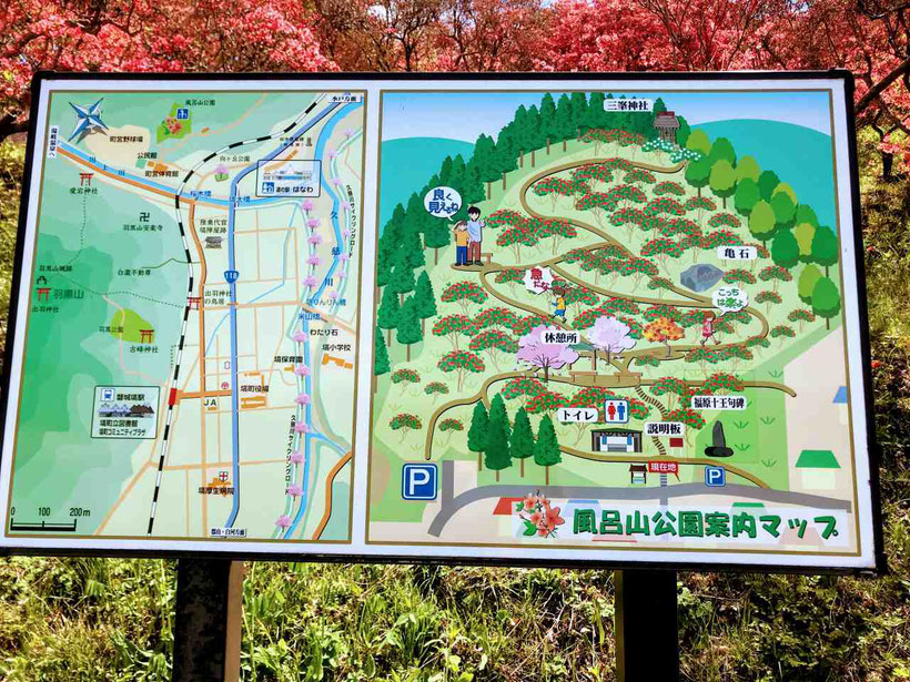 塙町 ヤマツツジの風呂山公園