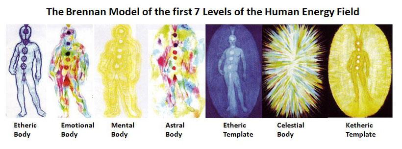 De zeven energetische lichamen