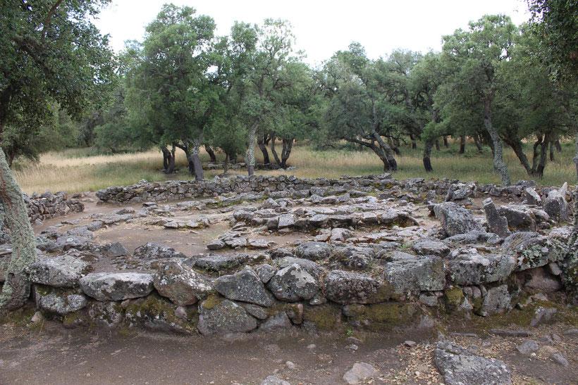 Brunnenheiligtum und nuraghisches Dorf Su Romaneszu, Bitti
