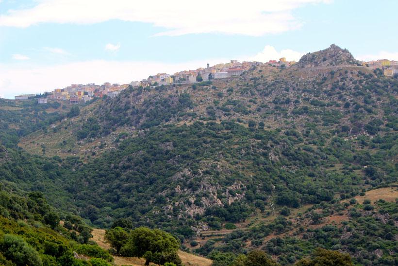 Der Ort Orune liegt mit seinen bunten Häusern hoch über dem Tal