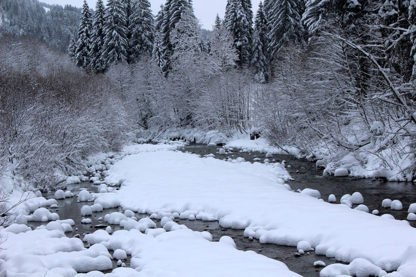 Winterwanderweg am Schwabenhof, Balderschwang