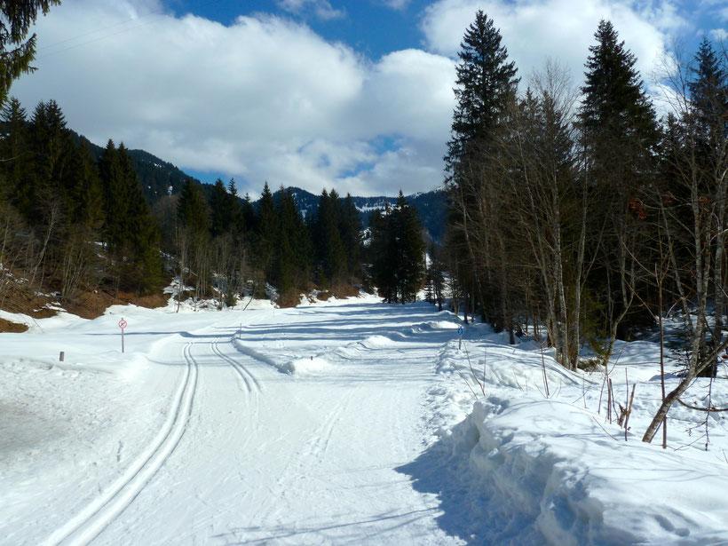 Loipe und Wanderweg. Vom Schwabenhof nach Balderschwang