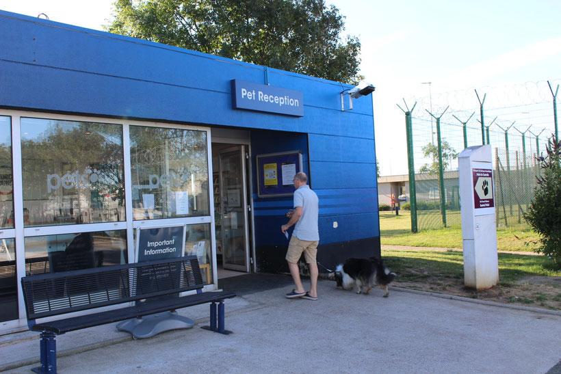 """""""Pet Reception"""". Das Hundemädchen checkt vor der Überfahrt Calais - Folkestone ein"""