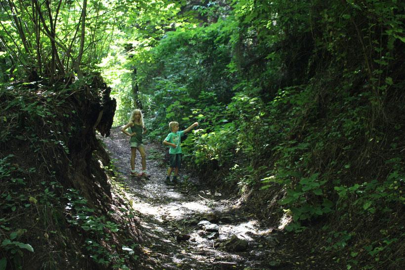 Wandern, so wie es auch unsere Kinder mögen. Höhlig, wurzlig und hinter der nächsten Biegung wartet vielleicht ein unerforschtes Geheimnis