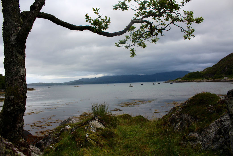 Bucht in Glenuig